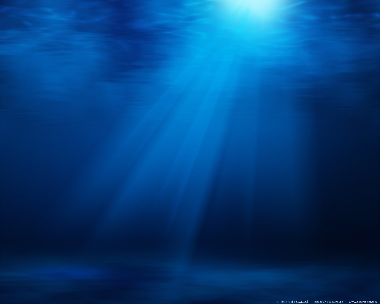 Underwater Ocean Scene Wallpaper