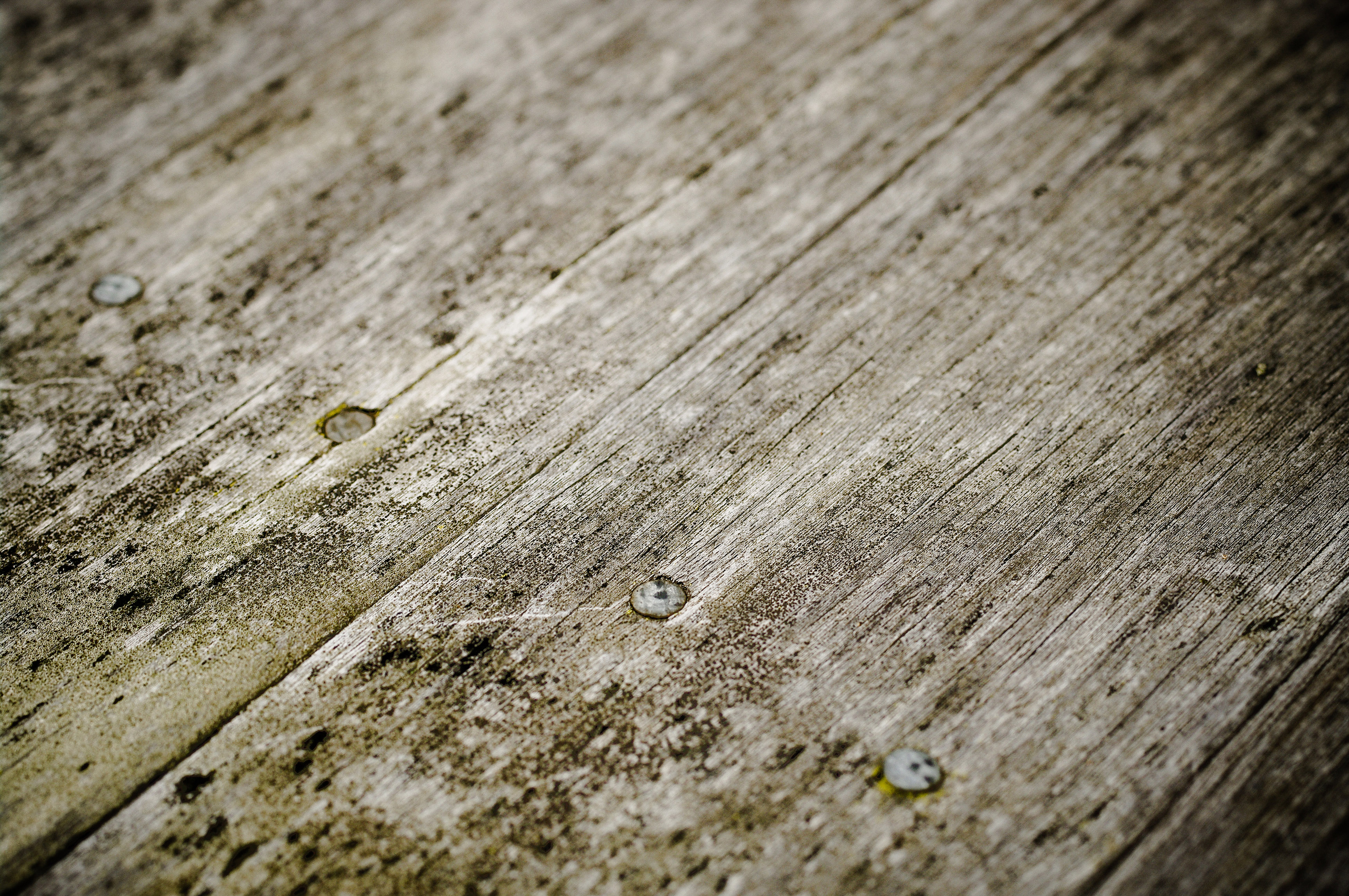 Wood Texture Of Some Old Floorboards Background